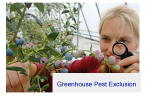 greenhouse pest exclusion